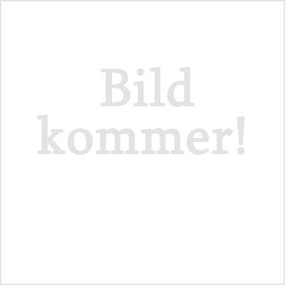 styrelse_bildkommer